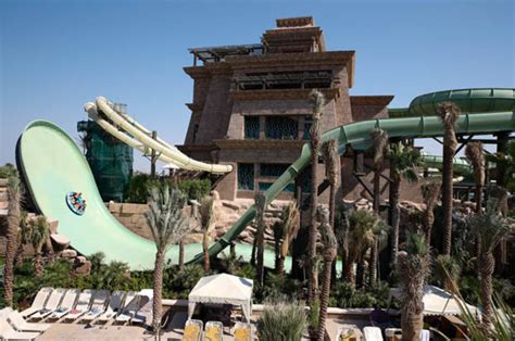 Swim with sharks in exotic Dubai waterpark: One of the top