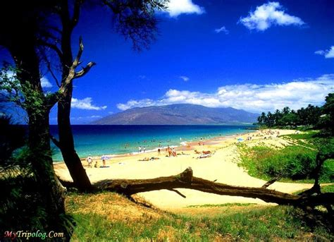 17 Best images about Hawaii on Pinterest | Snorkeling