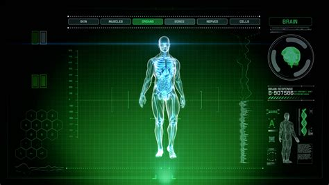 Futuristic Interface Display of Full Body Scan with Human